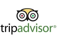 TripAdvisor Logo Peak Evolution Media Travel Marketing